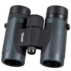 Grab a pair of these compact binoculars to watch your birds out of this diy bird feeder
