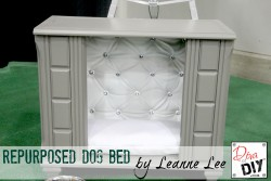 dog bed after