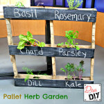A quick and easy DIY pallet garden idea for your outside herbs. The perfect garden for a beginner with very little space to garden in great for flowers too!