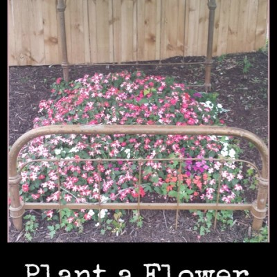 Mother's Day Flower Bed