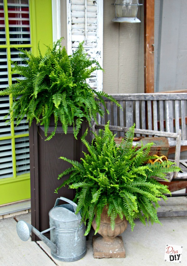 Wanting big planters that make a statement but do not want to pay up to $100 a piece for them? Then I have the perfect DIY planter boxes for you!