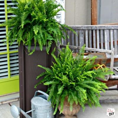 Discover How To Make The Best Outdoor Planter