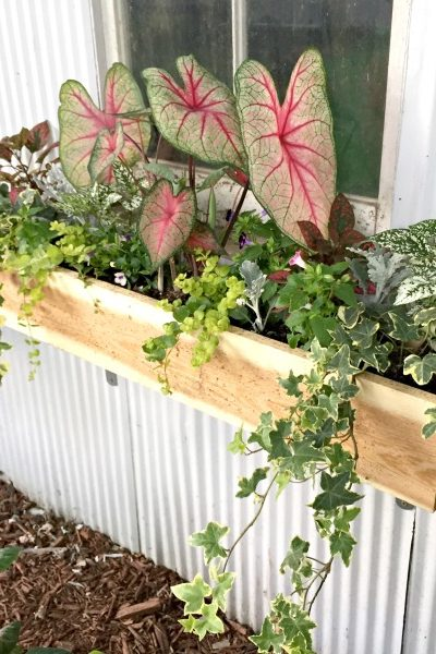 How to Make the Easiest Cedar Window Boxes
