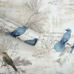 Bring the outdoors in with this bird contact paper