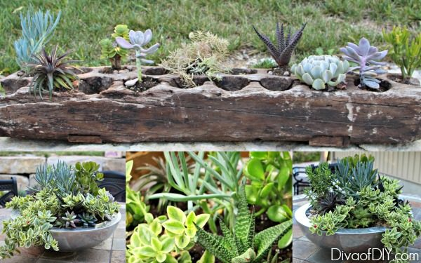 Try these unique outdoor flower planter ideas to add character to your summer decor! Great flower ideas for a flower garden in front of the house or inside!