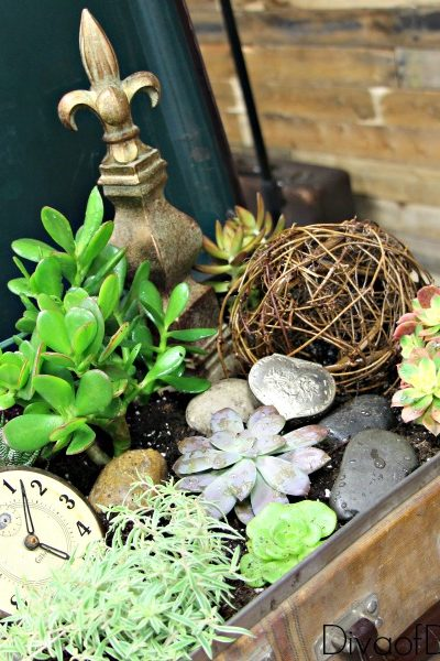 Unique Flower Planter Ideas For Flowers and Succulents