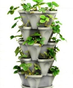 This 5 tiered planter is another great raised garden option