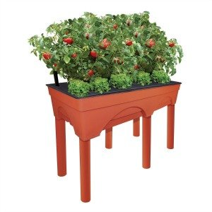 This raised garden bed is perfect for tomatoes or any veggies