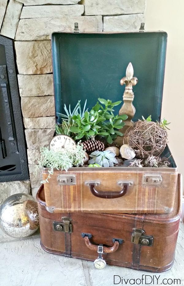 DIY Boho Craft Projects Succulents