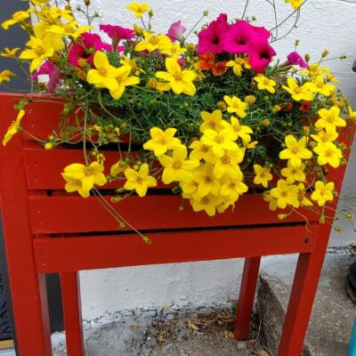 Raised Garden Planter: An Easy Wood Crate Project